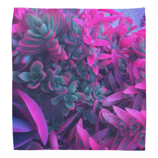 Pretty Floral Abstract Succulent Nature Photograph Bandana