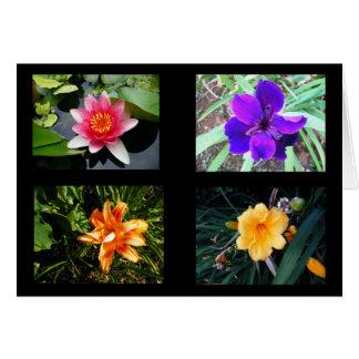 Pretty Flowers, Blank Greeting Card