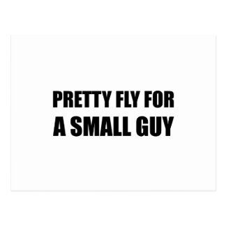 Pretty Fly For A Small Guy Postcard