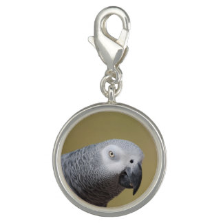 Pretty Grey Parrot Charms