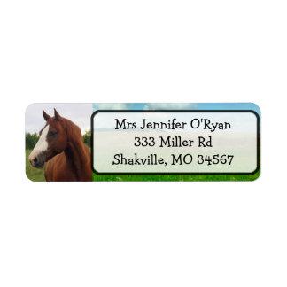 Pretty Horse Return Address Labels