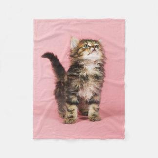 Pretty in Pink Kitten Fleece Blanket