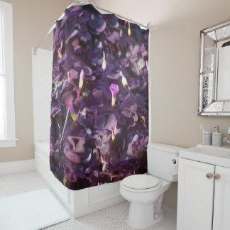 Pretty In Purple Flowers