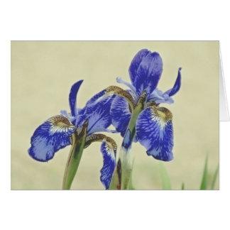 Pretty Iris Pair Card