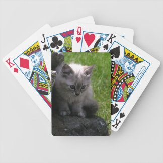 Pretty Kitten Bicycle Playing Cards