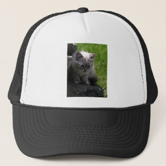 Pretty Kitten Trucker Hat