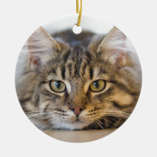 Pretty Kitty Looking at You Ceramic Ornament