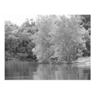 Pretty Lake Postcard