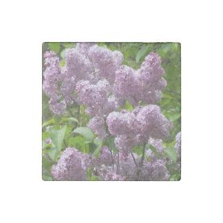 Pretty Lilac Bush Stone Magnets