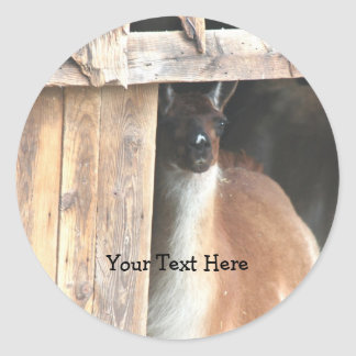 Pretty Llama Farm Animal Sticker