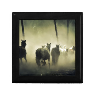 PRETTY LOOKING HORSES GIFT BOX