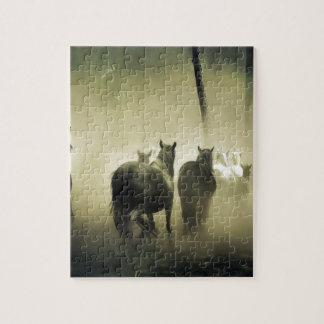 PRETTY LOOKING HORSES JIGSAW PUZZLE