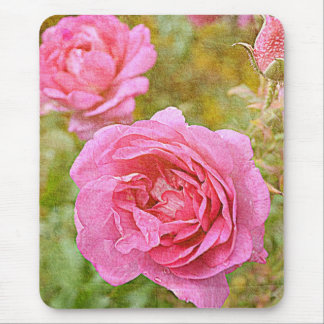 Pretty November Roses Mouse Pad
