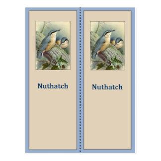 Pretty Nuthatch Bird Bookmark Postcard