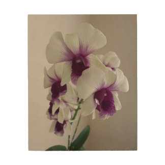 "Pretty Orchids, 8""x10"" Wood Wall Art"