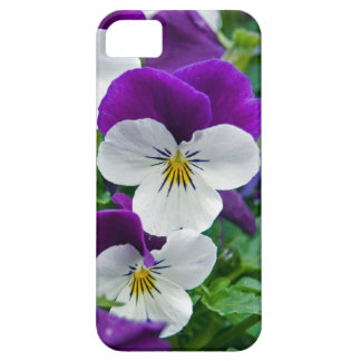 Pretty Pansies iPhone 5 Covers
