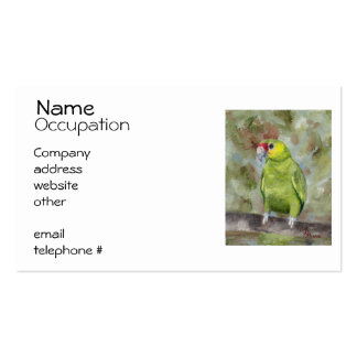 Pretty Parrot III Pack Of Standard Business Cards