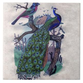 Pretty Peacock with Bird Tile