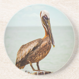 Pretty Pelican Perched Over the Ocean Beverage Coasters