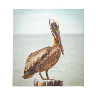 Pretty Pelican Perched Over the Ocean Notepad