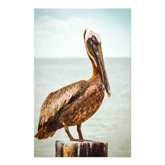 Pretty Pelican Perched Over the Ocean Stationery