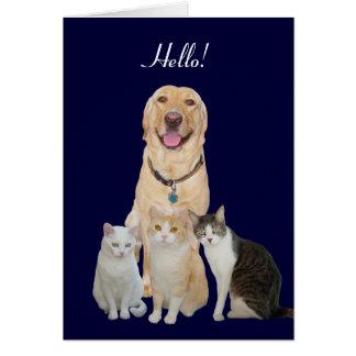 Pretty Pets Note Card