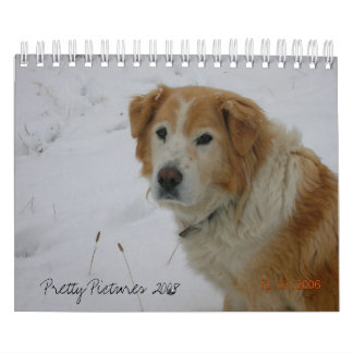Pretty Pictures 2008 Wall Calendars