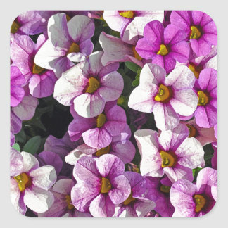 Pretty pink and purple petunias floral print square sticker