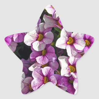 Pretty pink and purple petunias floral print star sticker