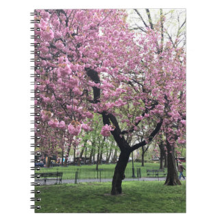 Pretty Pink Cherry Blossom Tree NYC New York City Spiral Notebook