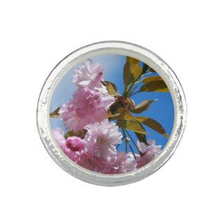 Pretty Pink Cherry Tree Photo Ring