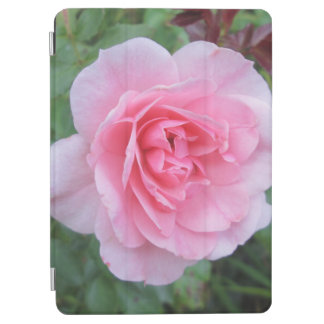 Pretty Pink Flowering Rose iPad Air Cover