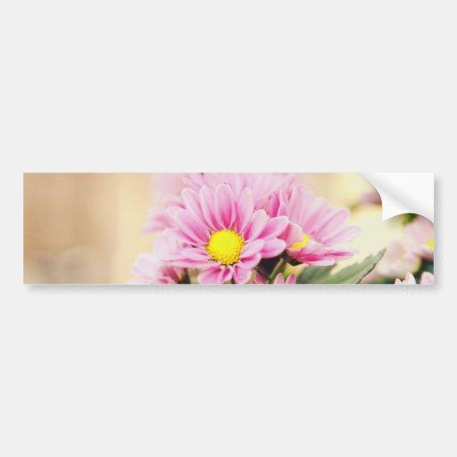Pretty pink garden flowers bumper stickers