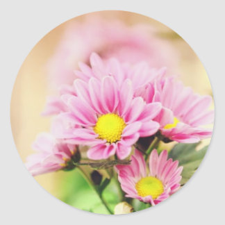 Pretty pink garden flowers round sticker