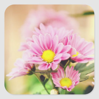 Pretty pink garden flowers square sticker