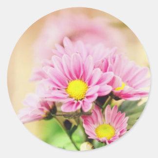 Pretty pink garden flowers round sticker