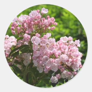 Pretty Pink Mountain Laurel Flowers Classic Round Sticker