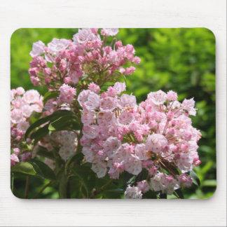 Pretty Pink Mountain Laurel Flowers Mouse Pad