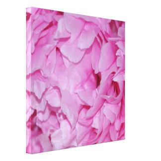 Pretty Pink Peony Flower Canvas Print