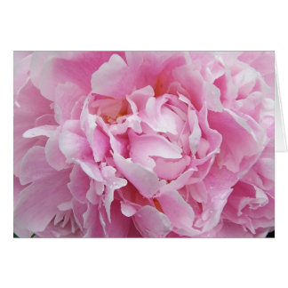 Pretty Pink Peony Note Card