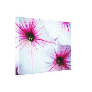 Pretty Pink Petunias Canvas Print