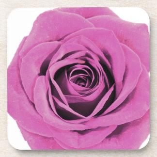 Pretty Pink Rose 20171028 Coaster