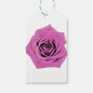Pretty Pink Rose 20171028 Gift Tags