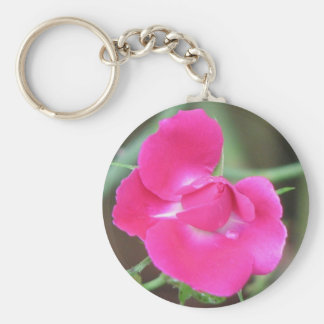 Pretty Pink Rose Basic Round Button Keychain