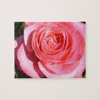 Pretty Pink Rose Jigsaw Puzzle