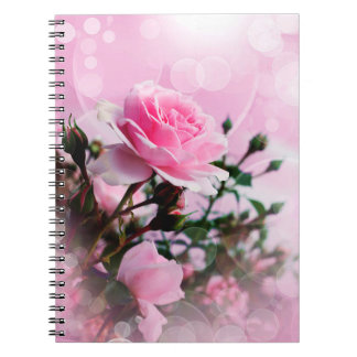 Pretty Pink Roses Spiral Note Books