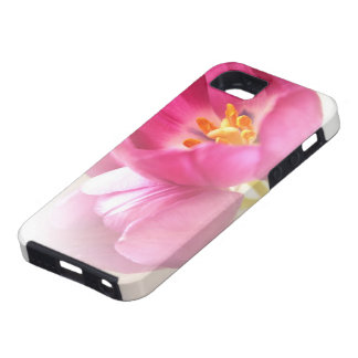 Pretty Pink Tulips iPhone 5 Case