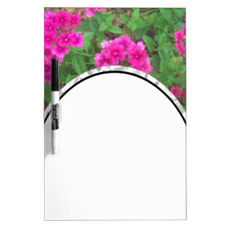 Pretty pink verbena flowers floral photo dry erase board