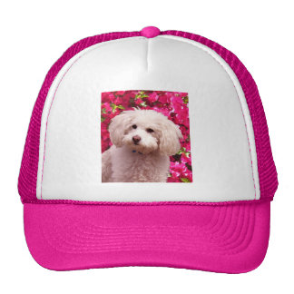 Pretty Poodle Trucker Hat