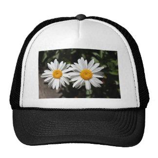 Pretty pure white daisy flowers trucker hat